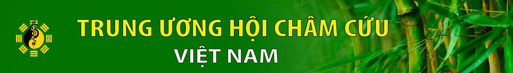 Hội Châm Cứu Việt Nam